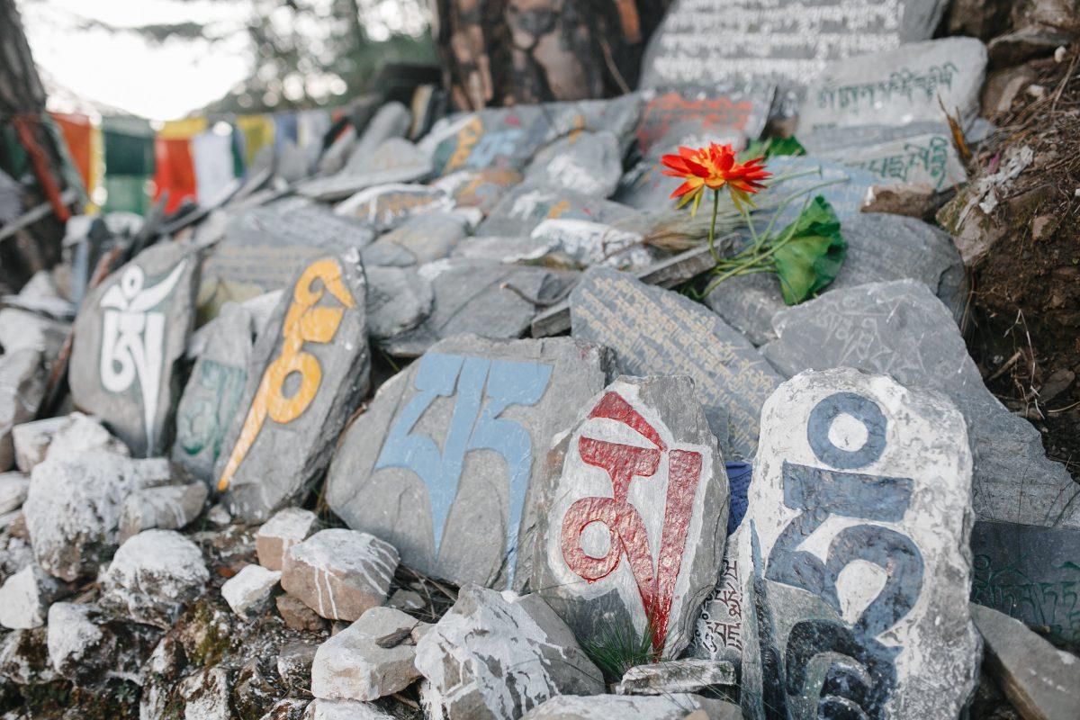 Виховання Серцем. Чого навчав Далай-лама українських освітян. Частина 2