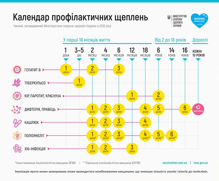 Календар щеплень. Інфографіка: МОЗ